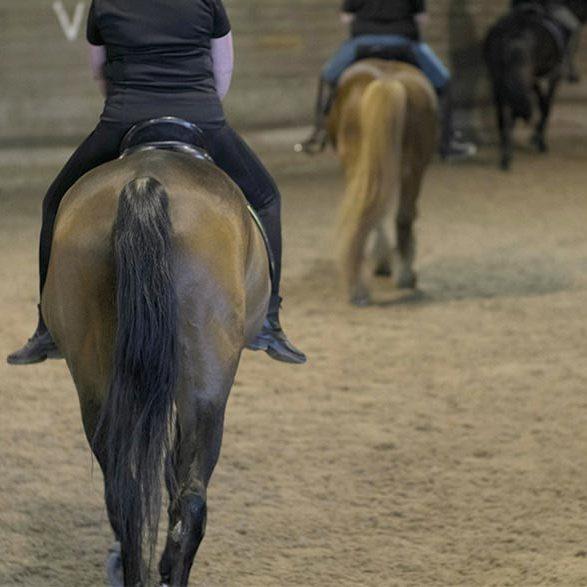 Ridestilling på hest under ridefysioterapi
